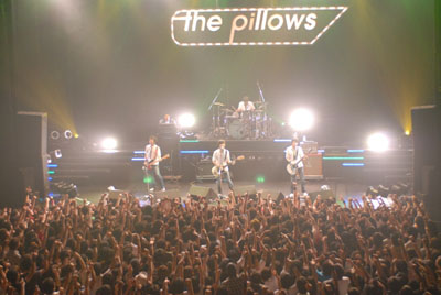 Pillows Live 2